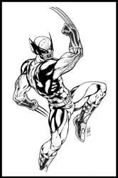 Wolverine by AllanOtero