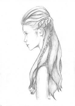 Halfupdo with braids