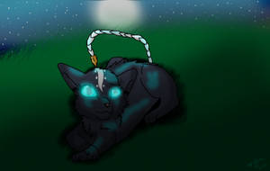 Prize:Solice by AngelfurOfShadowclan