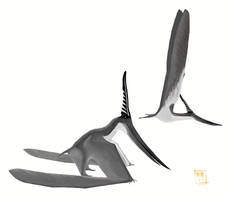 Male Pteranodon longiceps by MattMart