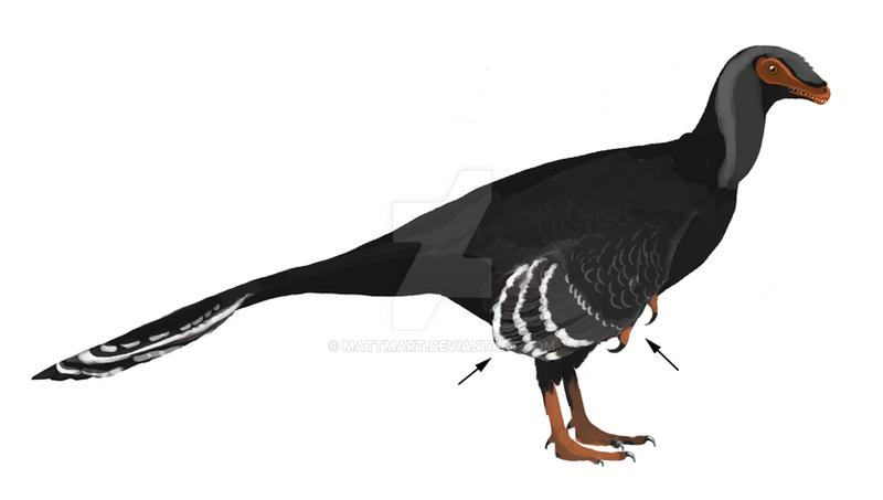 Yixianosaurus longimanus by MattMart