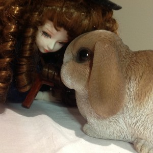 crazy-rabbit-1407's Profile Picture
