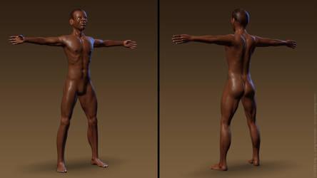 Massai model