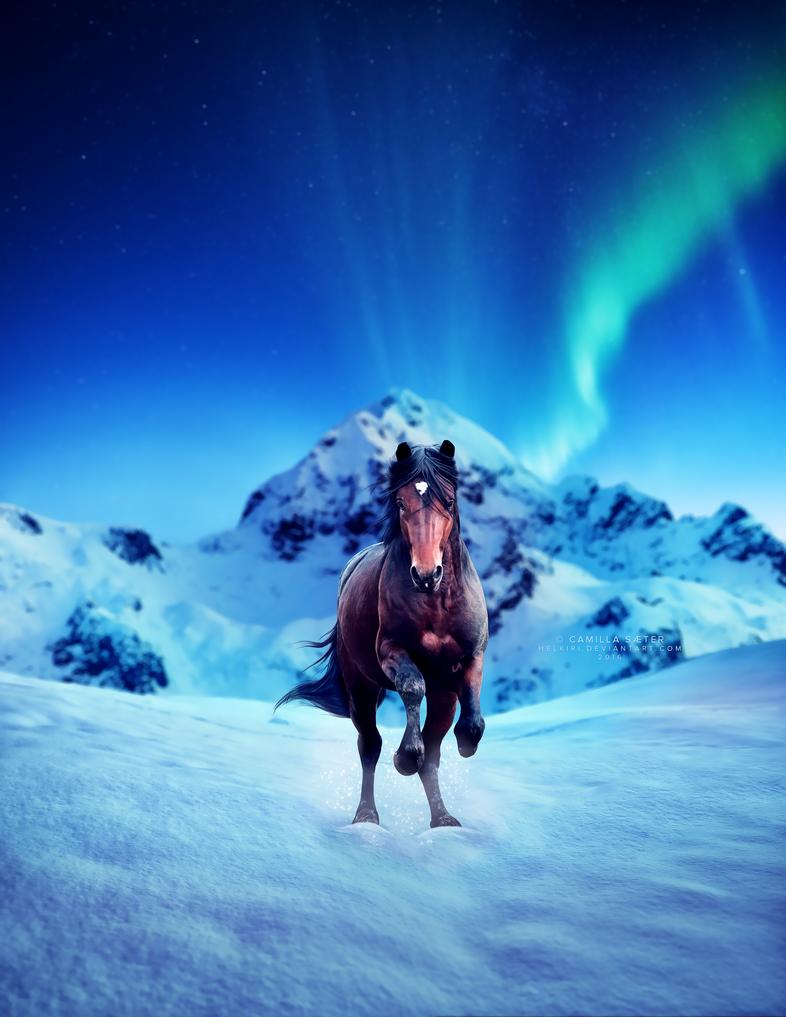 aurora borealis by helkiri