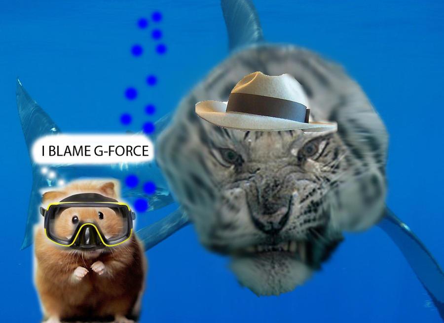 Tiger White Shark Great White Shark vs Tiger