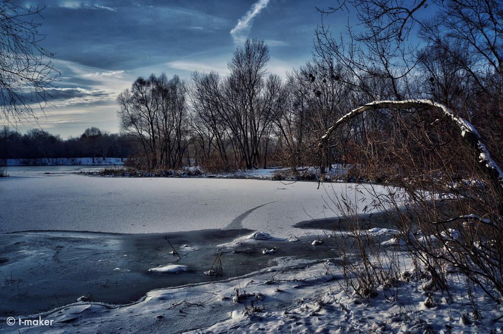 In the Coldness of Winter by t-maker