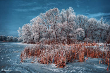 Beauty of Winter. Another Edit