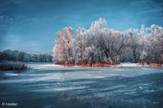 Enjoying Winter