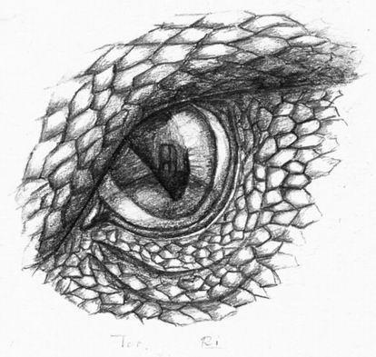 Dragons eye by rakiel