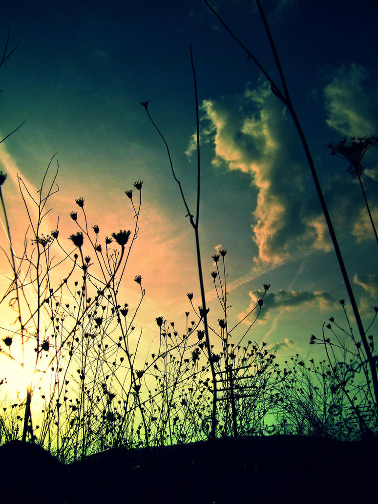 A Fairytale Fantasy by lilithfirefly