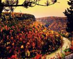 Aura of Autumn