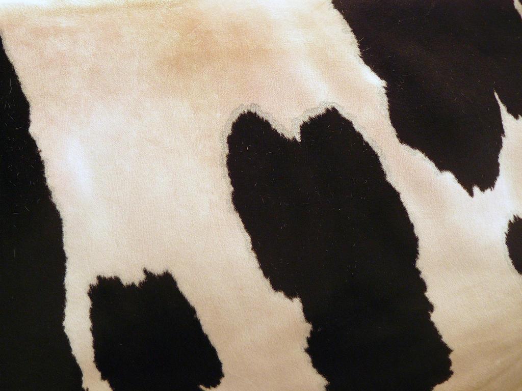 cow fur 1