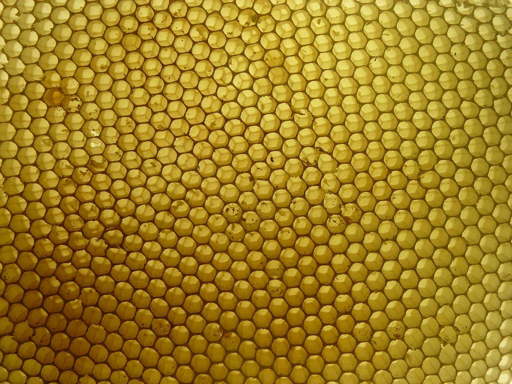 honeycomb stock