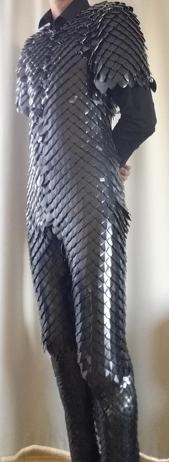 WIP full body metal dragonscale armor by BlackMetalDragon