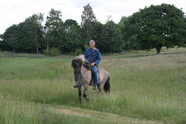 Iron Age Rider 1 by LPHogan