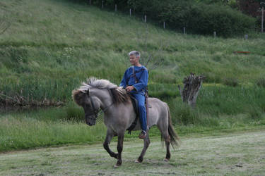 Iron Age Rider 3 by LPHogan