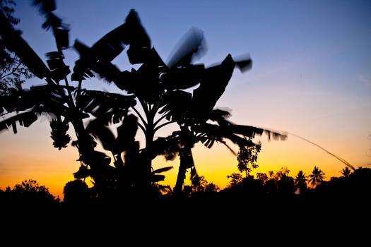 sunset Indonesia