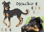 Dracko - reference sheet