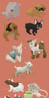 Cartoon animals study by Caravaggia