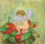 Tomato Fairy