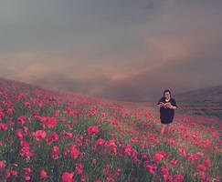 Peacefull Field