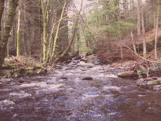 Wales stream by chris3290