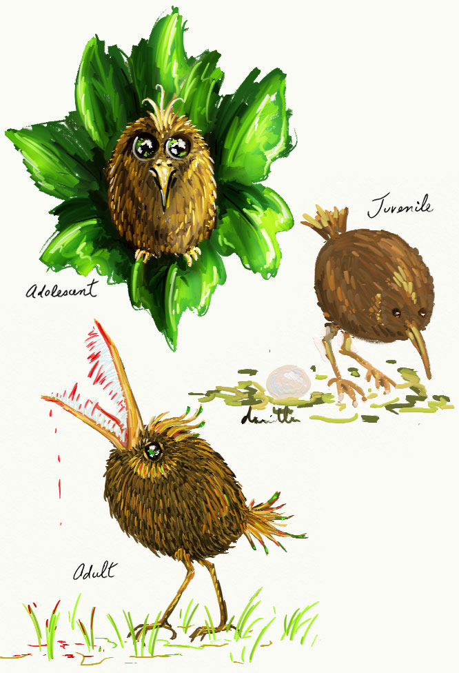 Lifecycle of a Kiwifruit Bird by somnambule on DeviantArt