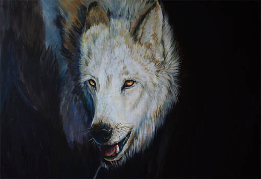 Wolf in Acrylics :D