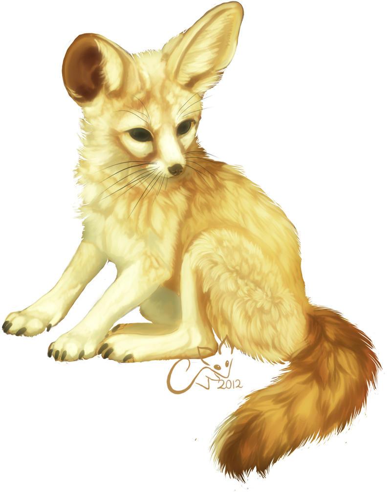 I draw fennecs... by cottondragon