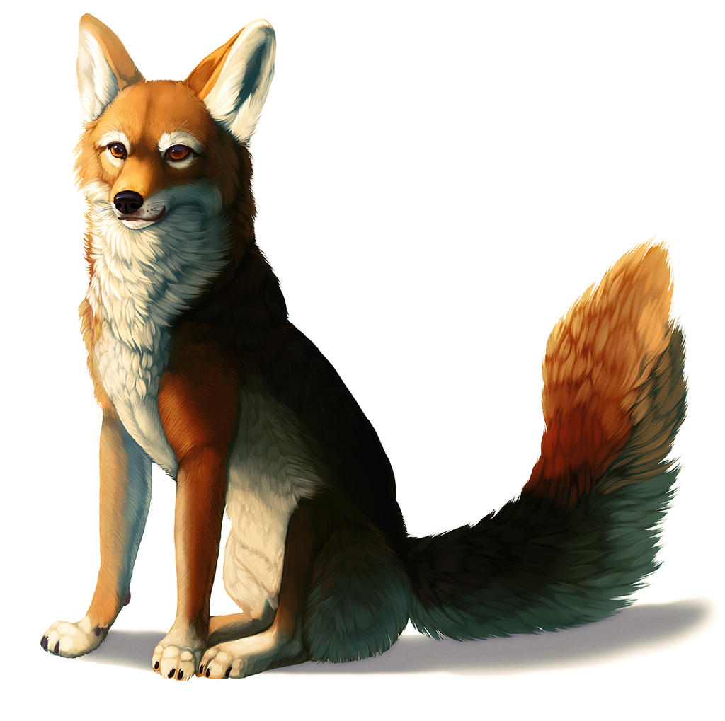 Rainbow Yote-Fox-Dog-Thing