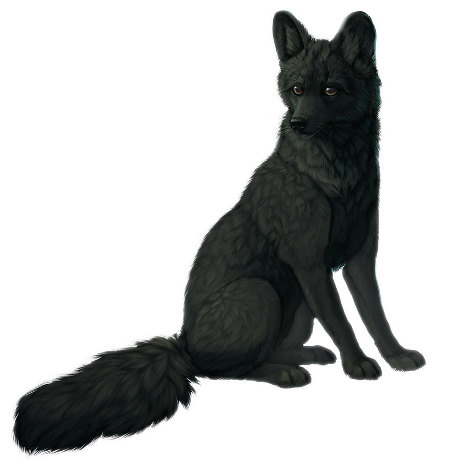 Blackfox by cottondragon
