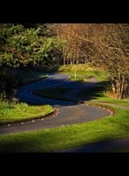 Snakey path