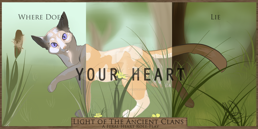 Light Of The Ancient Clans A Feral Heart RP By Sbah Ekotai On DeviantArt