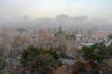 A Snowy Toronto Morning
