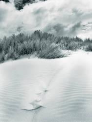 sand dunes-2 by popp2