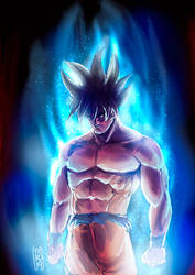 Goku ultra instinct by Fpeniche