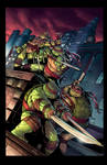 TMNT 35 years cover tribute