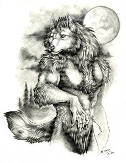 Mati wolf by PheraRow