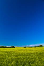 Mittweida, fields by Stilllife-Txa
