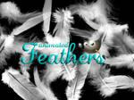 Feathers GIMP Brush
