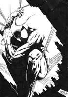 Spider-man by StudioCombine