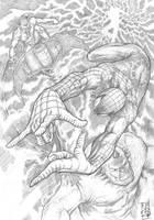 The Amazing Spider-Man 2 by StudioCombine