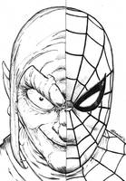 Nemeses: Spider-man and Green Goblin by StudioCombine