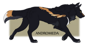 Domaincember Day 2 | Andromeda