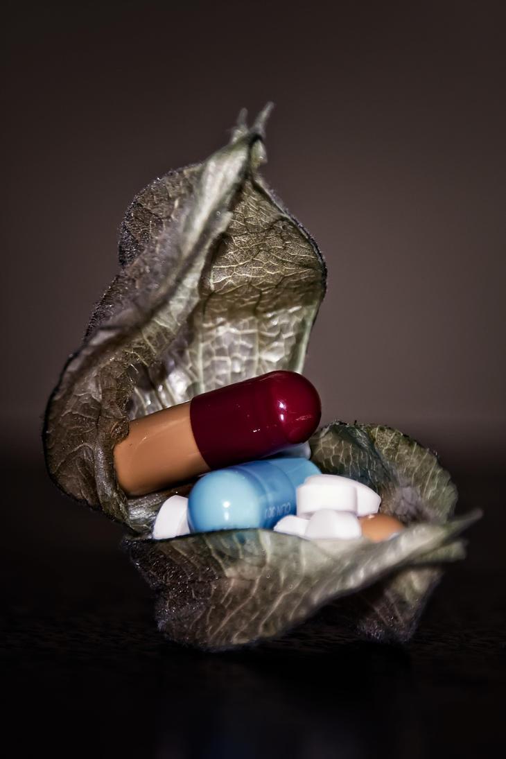 Natures Medicine by AwkwardFaze