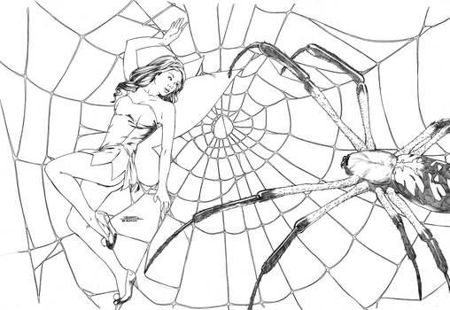 Tink caught in Web