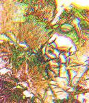 MichelleTrachtenberg-14504954 1220335704700364 263