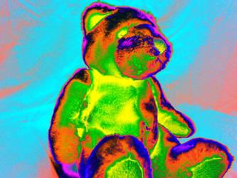 bear-IMG 8571