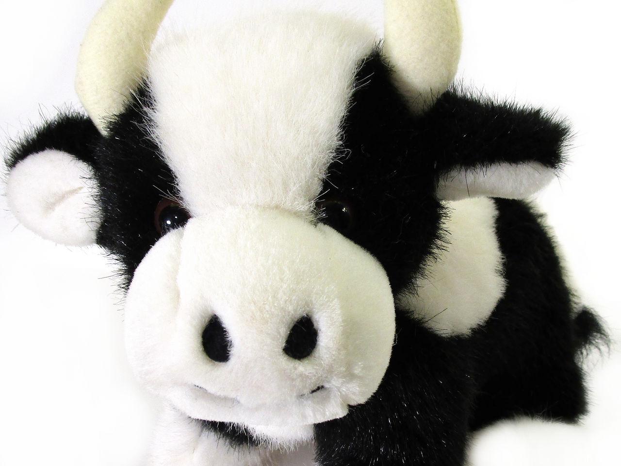 Plush-cow-7952
