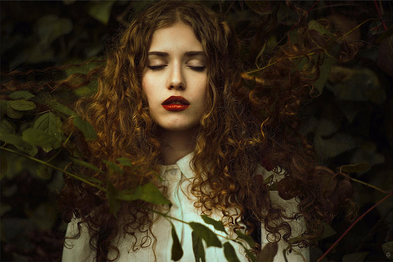 Into the woods III by LidiaVives
